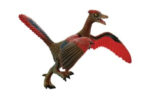 Medium Archaeopteryx ML